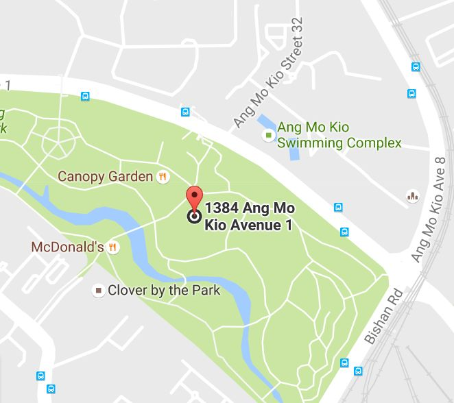 Grand Lawn 1 River Plains Bishan AMK Park