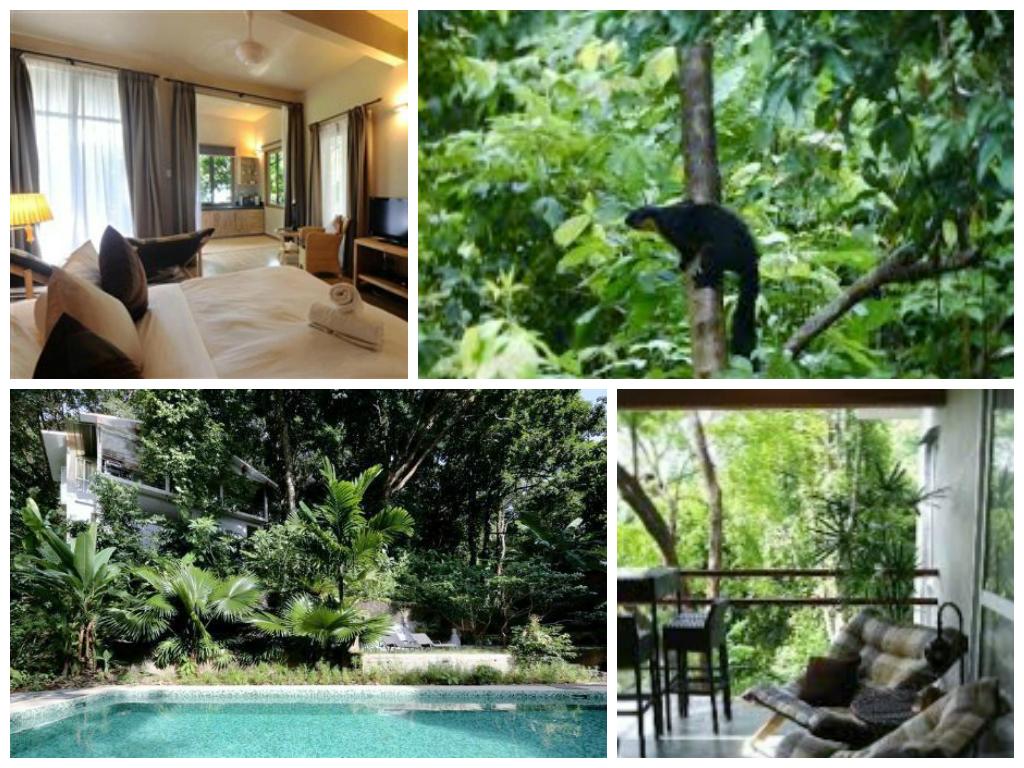 3D2N Langkawi Tropical Paradise Retreat