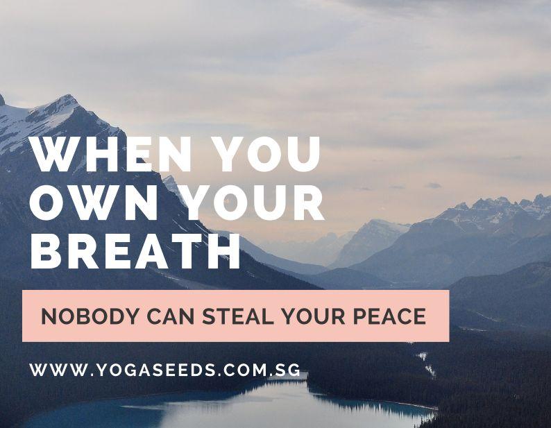 Yoga Seeds Post Natal Program