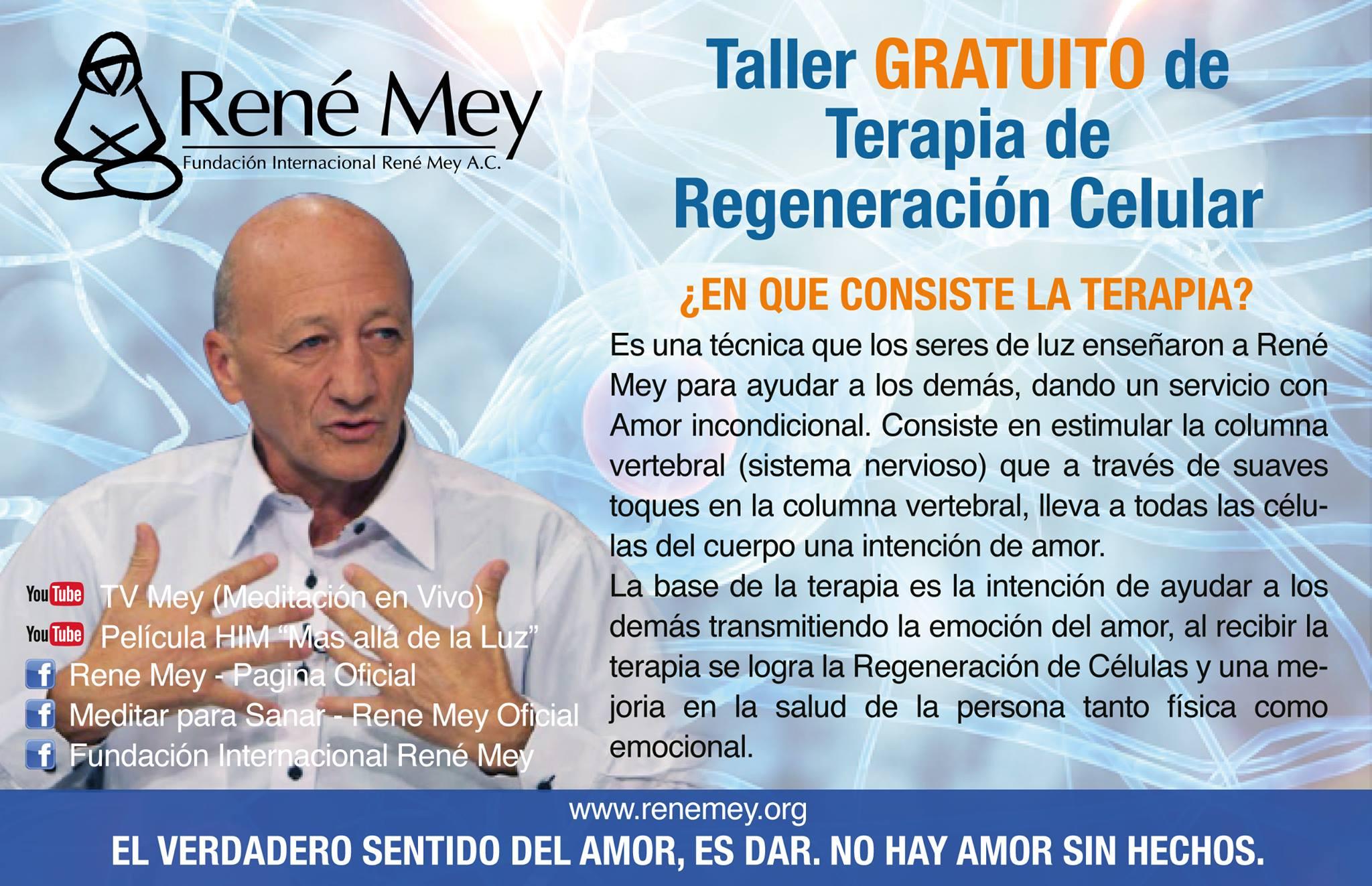 taller regeneracion celular