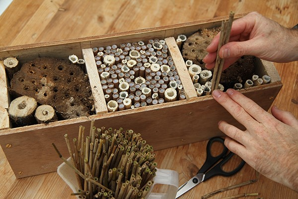 Bee hotel substrates