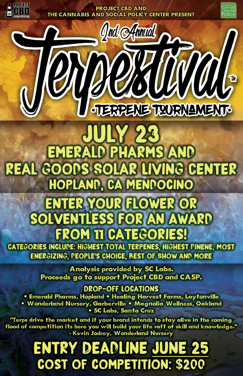 Terpestival enter the competition poster 2016 extended deadline