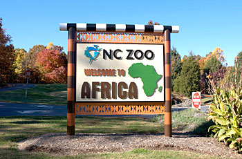 Teen Mastermind goes on safari at the NC Zoo