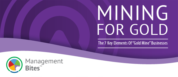 Mining For Gold - The 7 Key Elements of Gold Mine Business