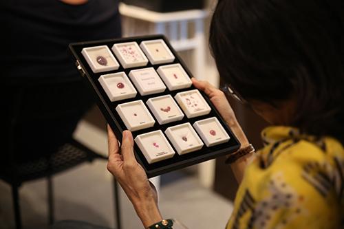 the gem museum program