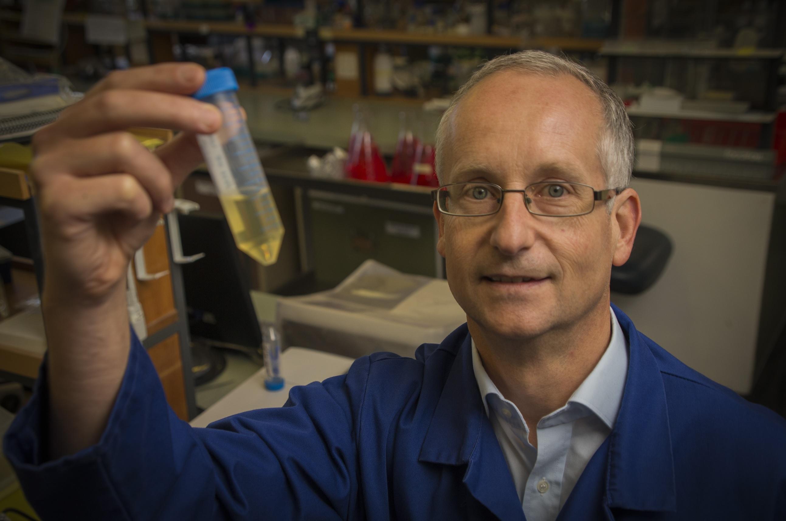 Professor Bernd Rehm