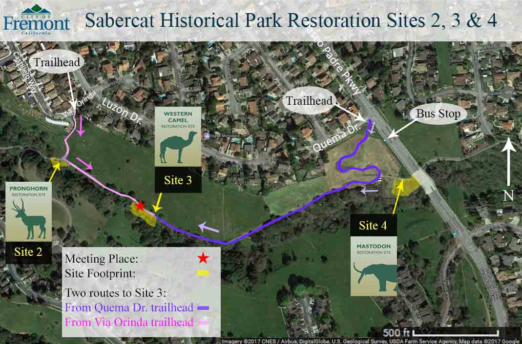 How to get to Sabercat Creek's Western Camel Restoration Site (Site 3)