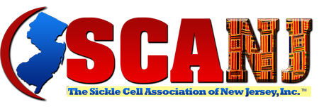 SCANJ logo