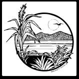 CENDO Logo