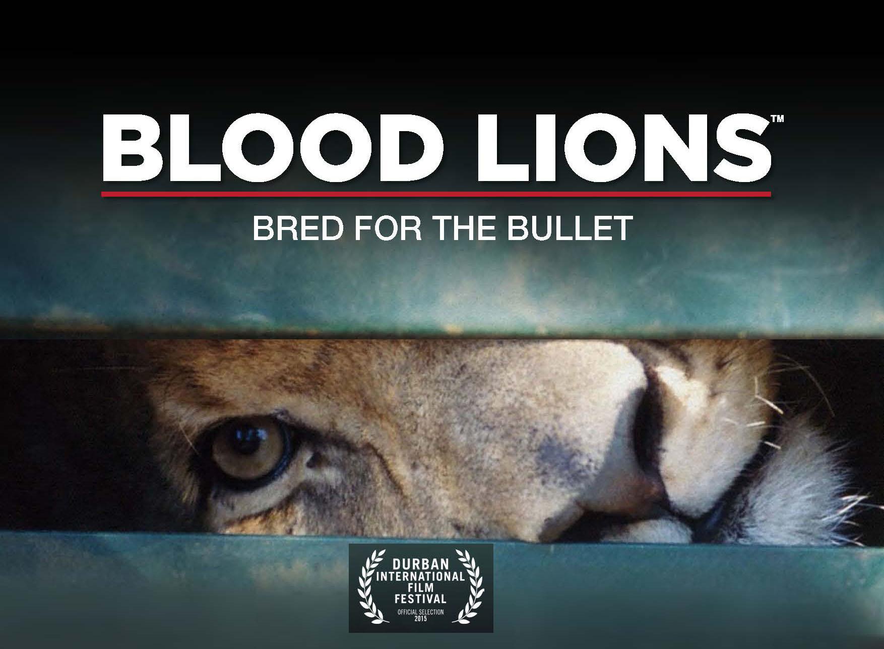 Blood Lions Banner