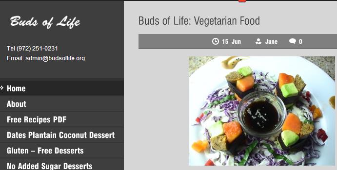 Vegetarian Buds of Life