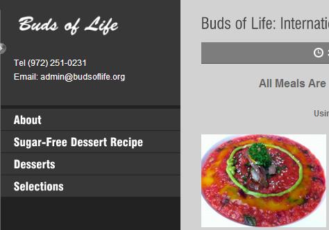 International Cuisine Buds of Life