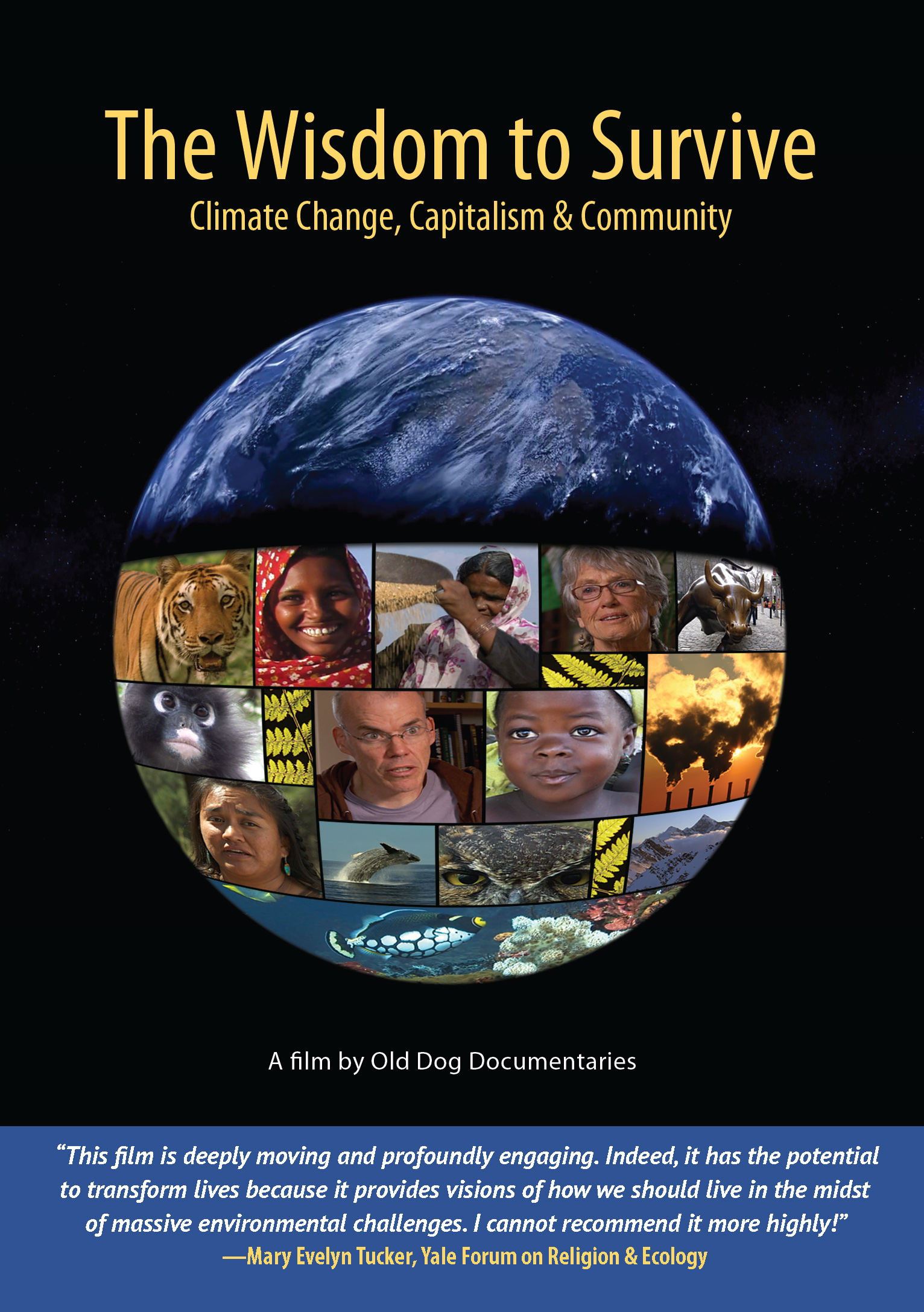 THE WISDOM TO SURVIVE examines the challenges that climate change poses and discusses meaningful action that can be taken by individuals and communities.