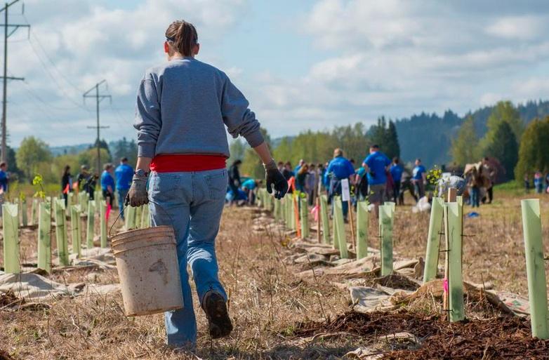 Volunteers planting trees at Reise Farm