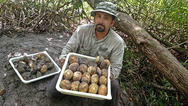Ian Bartoszek with python eggs