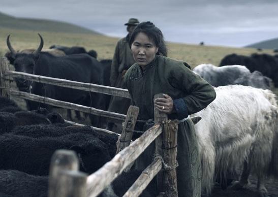 Tengri Yak Herder Woman