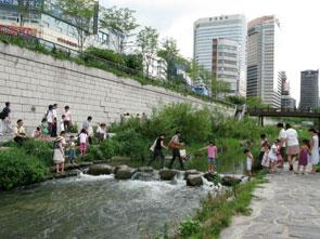 See more Green Infrastructure examples from cabe.org.uk