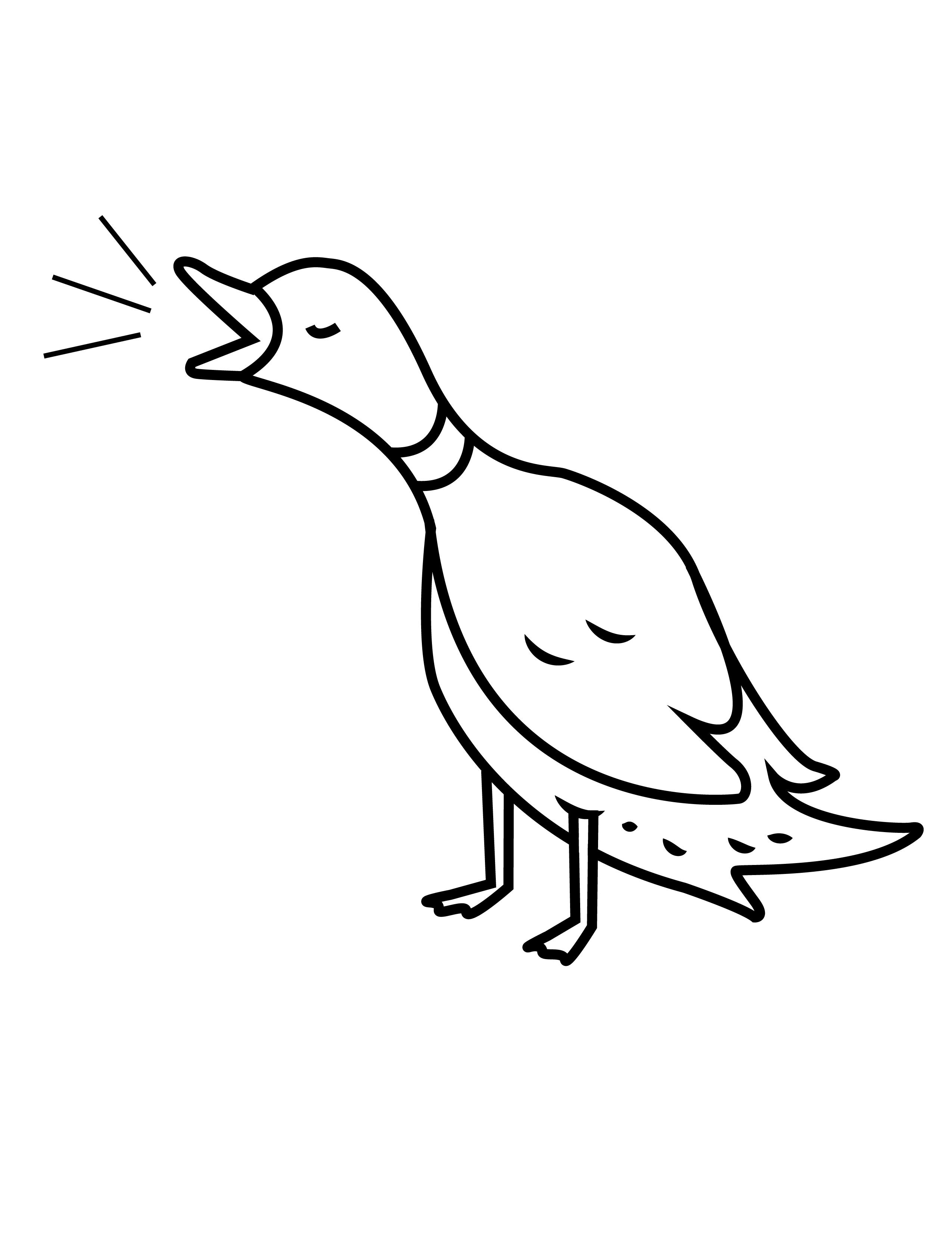Duck Club