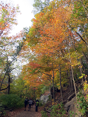 Fall colors at Breakneck