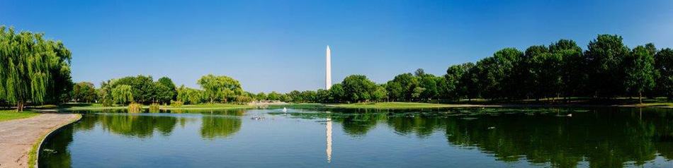 Summertime with Sterling Women of Washington DC