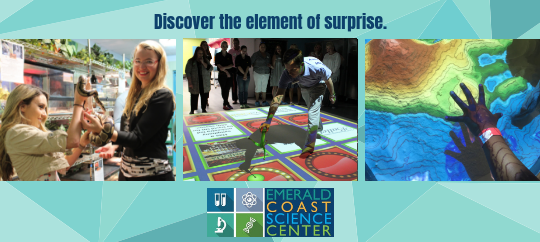Discover the element of surprise ECSC banner