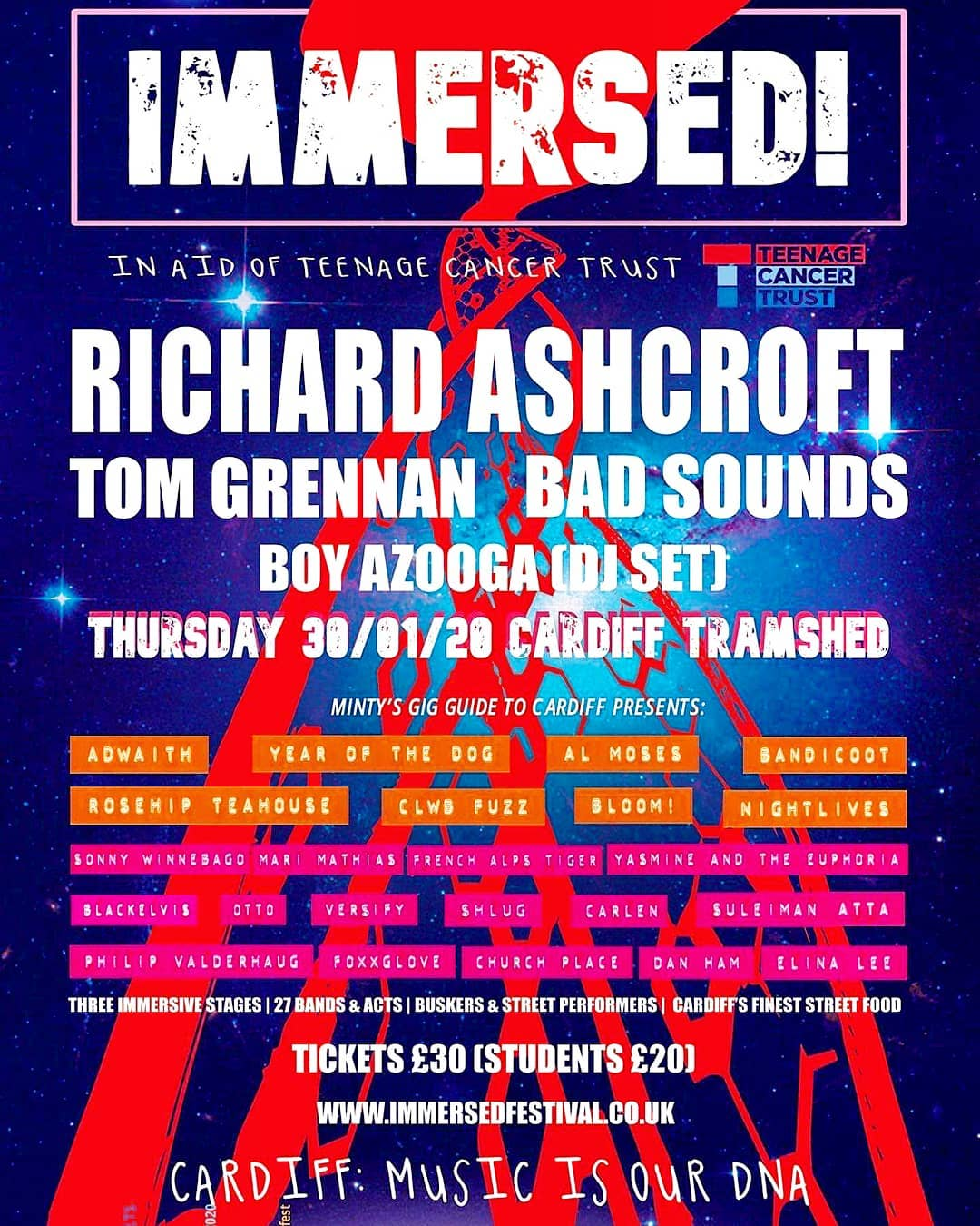 Immersed Flyer