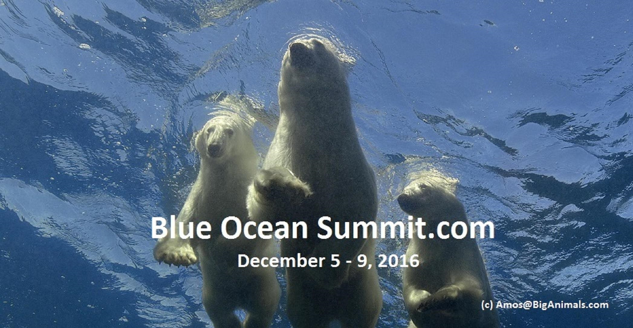 Blue Ocean Summit 2016 Resource Guide