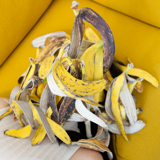 Kathy Hong Zhou  Banana Skin, 2017