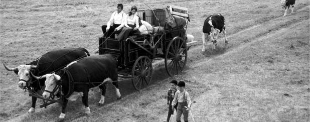 Still from Drylanders (1963)