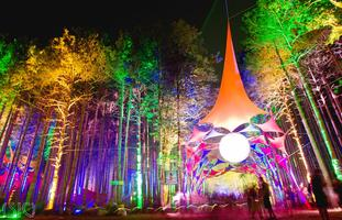 ELECTRIC FOREST BUS | Departs from MA & NY  | 6.26.13 - 7.2.13