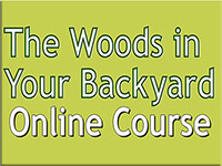 The Woods in Your Backyard online course logo