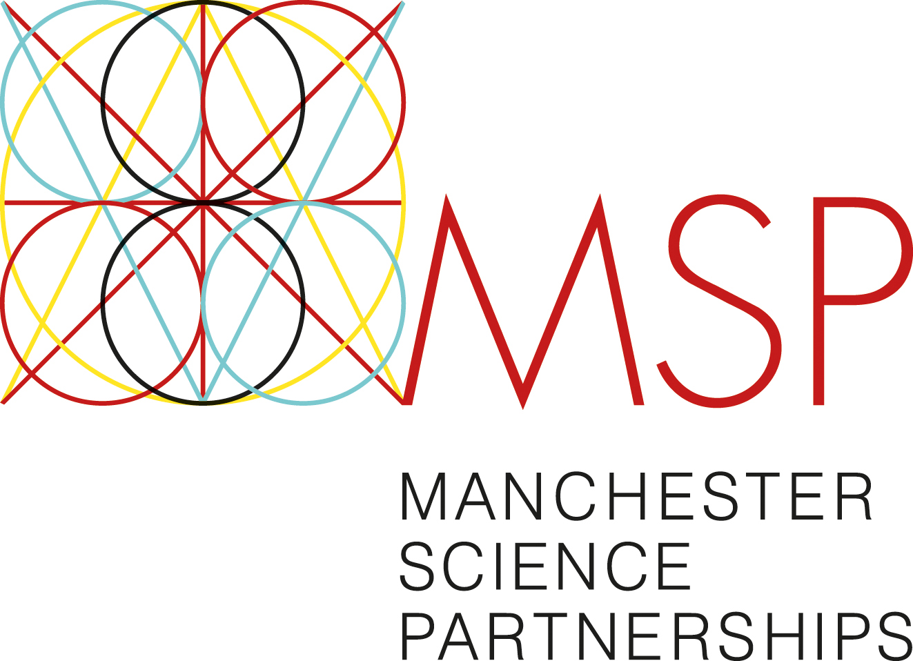 MSP logo (new)