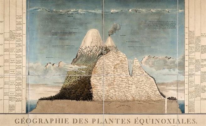 Essai sur la géographie des plantes : accompagné d'un tableau physique des régions équinoxiales, fondé sur des mesures exécutées, depuis le dixième degré de latitude boréale jusqu'au dixième degré de latitude australe, pendant les années 1799, 1800, 1801, 1802 et 1803