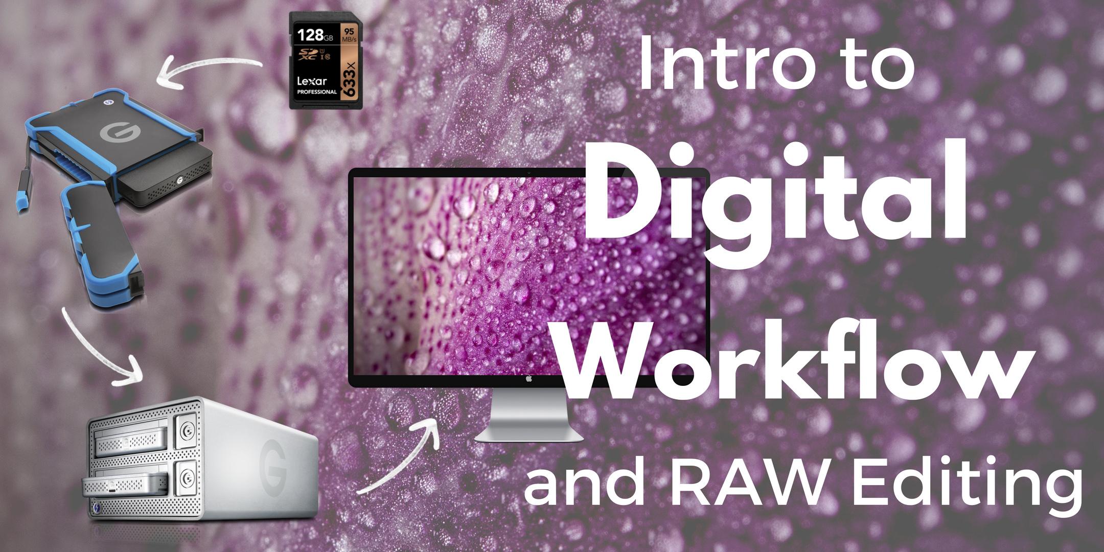 Intro to Digital Workflow with TJ Hansen