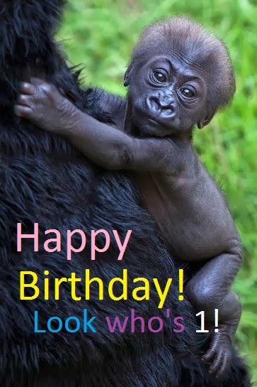 Kabibe Birthday