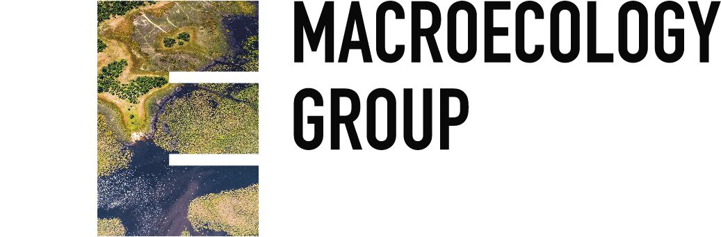 Logo of the BES Macro group
