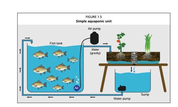 UNFAO Introduction to Aquaponics
