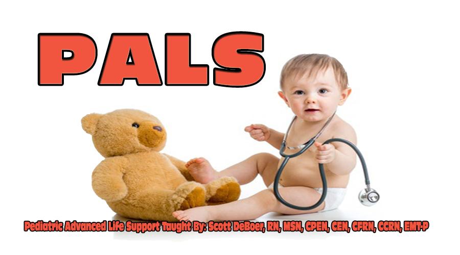 pediatric advanced life support pals provider manual pdf