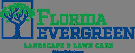 Florida Evergreen