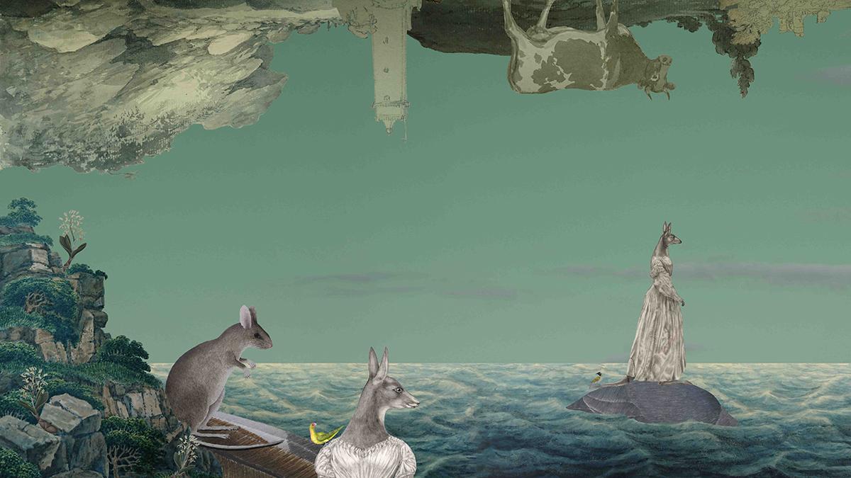 Eurotipodes (detail)   Artist - Anna Glynn