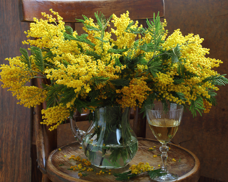 Mimosa Bouquet and Wine