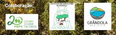 apoio-GestãoFlorestalTerritorioRiscosNaturais