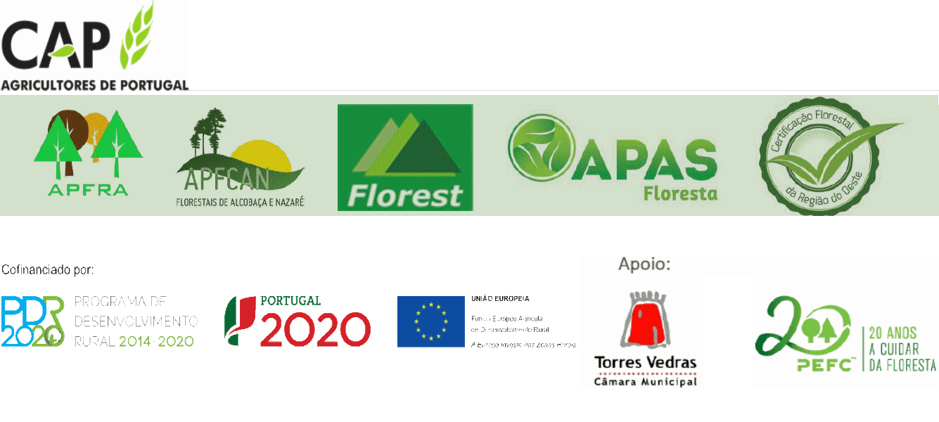 Logo-DesFlorestalRegOeste2