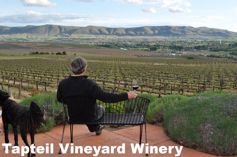 Tapteil Vineyard