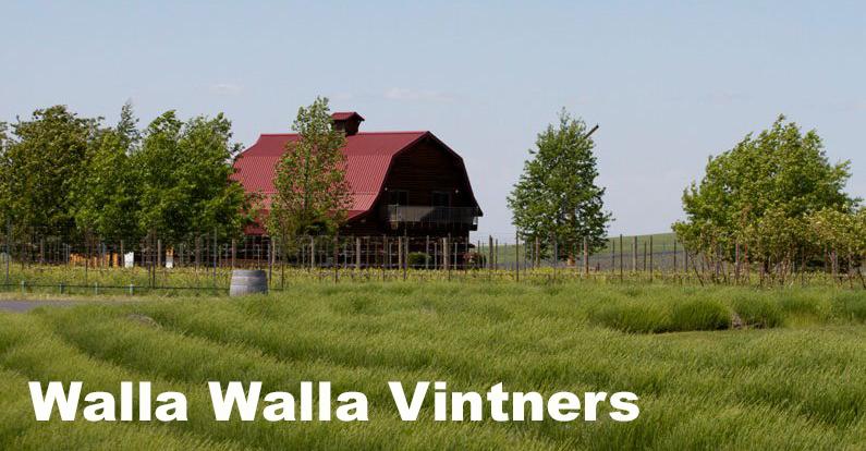 Walla Walla Vineyard