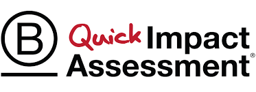 B Corp Quick Impact Assessment