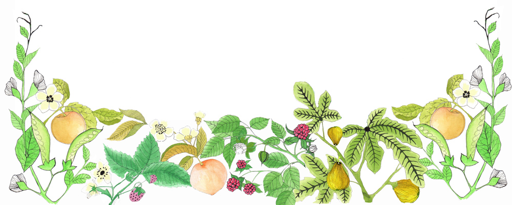 Banner Logo fruits and leaves