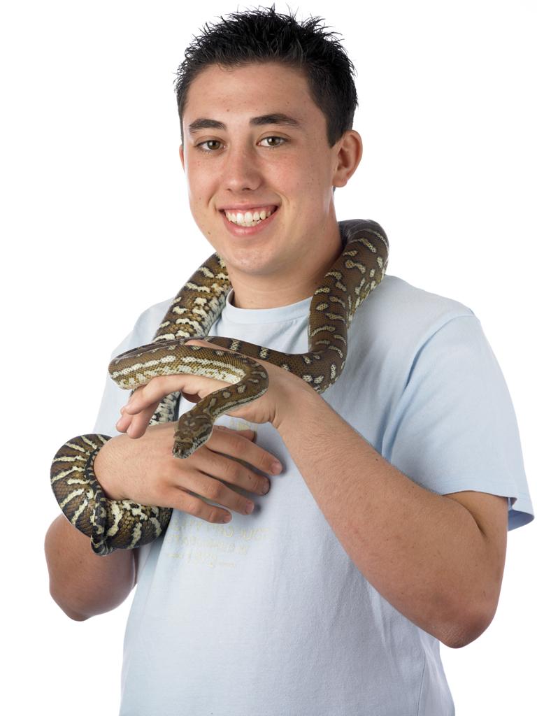 Holding Python