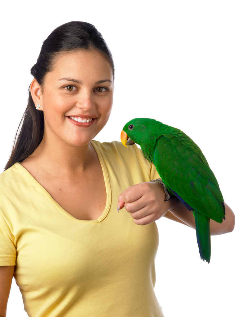 Holding Parrot