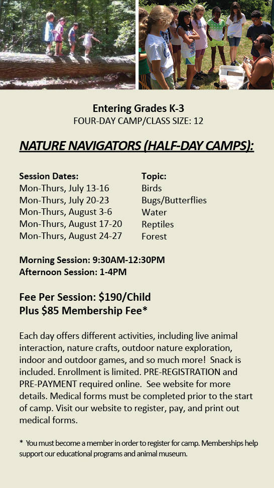 Nature Navigators Half-Day Camp